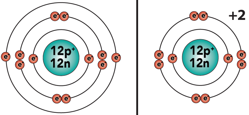 11_magnesium atom and ion