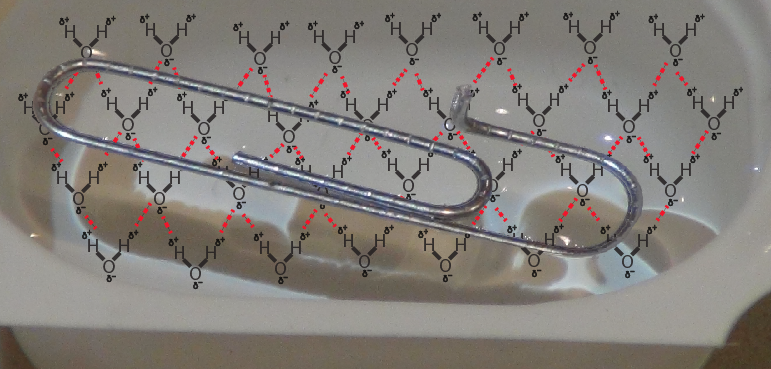 16_clip on net of water molecules