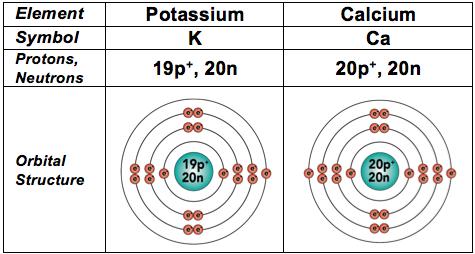 29_calcium and potassium
