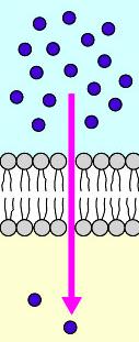 03_simple diffusion