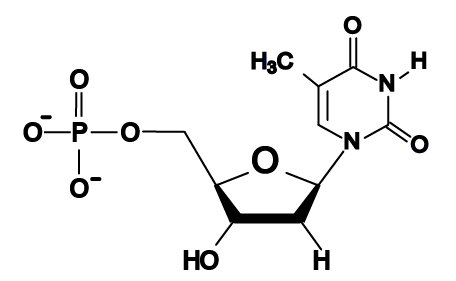 04d_thymine, structural