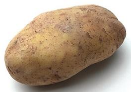 03a_Russet_Potato