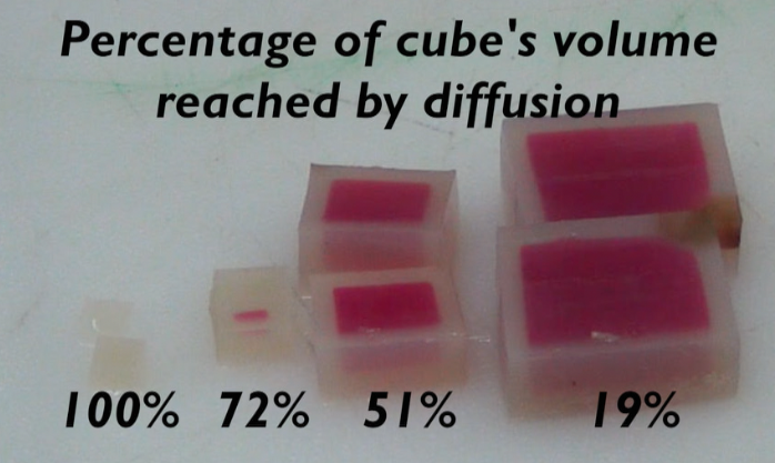 15_amount of diffusion into cubes